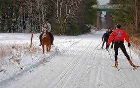 NRT winter & horse