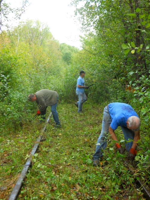 Volunteers clearing trail