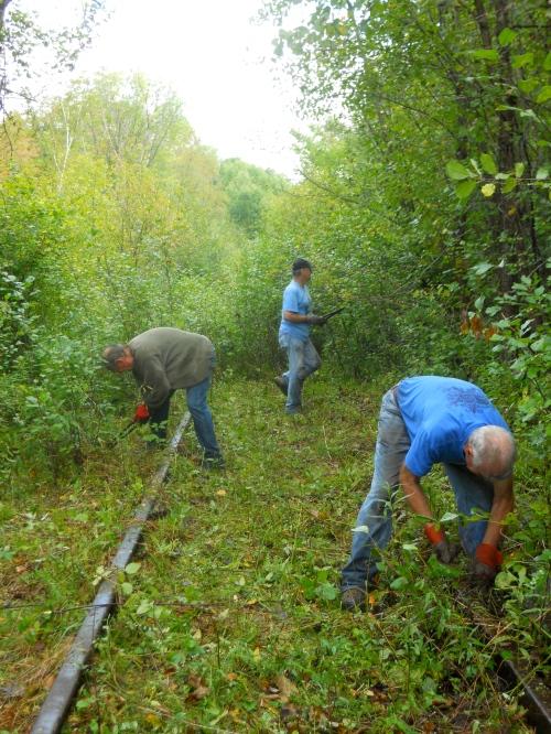 Volunteers clearing trail